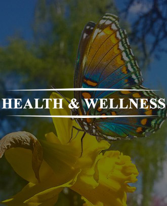 Healthy Visions - Pain and Stress Relief Products With Guided